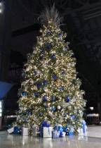 Michigan Christmas Tree Showcased by the Detroit Lions